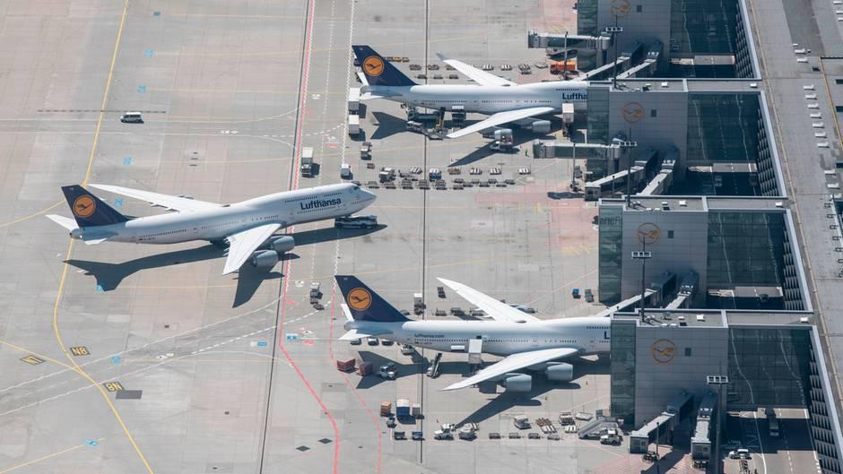 Rang 12: Lufthansa  Laut IATA beförderte die Lufthansain der Summe 64,3 Millionen Passagiere.Allein amersten Ferienwochenende Ende Juni 2019 flogenam Drehkreuz Frankfurt rund 235.000 Fluggäste mit Lufthansa in den Urlaub.