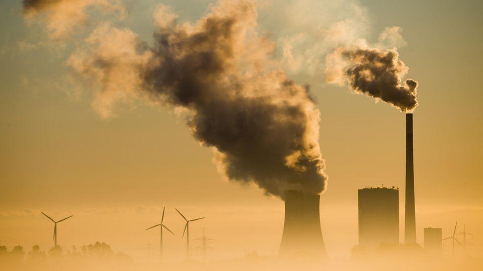Kohlekraftwerk als Klimakiller
