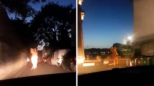 T-Rex läuft vor Polizei weg – und die Beamten finden's lustig