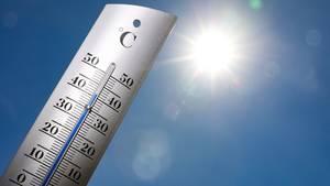 Hitzewelle in Deutschland – Thermometer zeigt 41 Grad Celsius