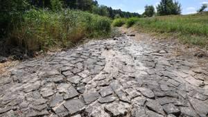 Studie der Uni Bern - Kein Klimawandel der letzten 2000 Jajhre war so wie dieser