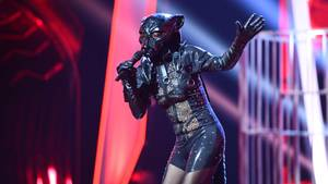 The Masked Singer: Panther