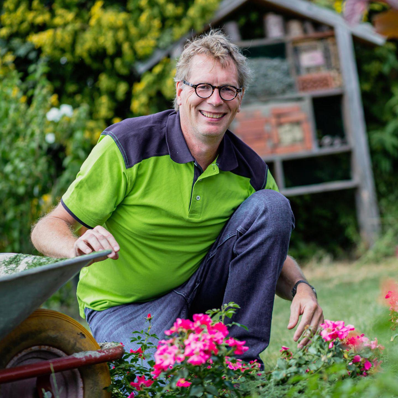 Bestsellerautor Rene Wadas Uber Den Richtigen Umgang Mit Pflanzen Chillen Nicht Killen Stern De