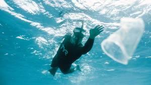 Ben Lecomte schwimmt auf Plastikmüll zu