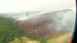 Russland: Riesige Waldbrände wüten in Sibirien – Fläche von 100.000 Hektar zu löschen