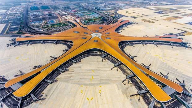 Der Phöenix spreizt seine Flügel - in China verheißt das Symbol einen glücklichen Beginn.
