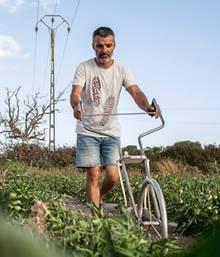 """Der Ökobauer und Mitbegründer Umweltorganisation """"Terraferida"""" Jaume Adroverauf seinem Tomatenfeld"""