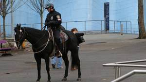 Berittene Polizei in den USA (Symbolbild)