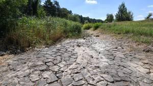 Klima: ausgetrocknetes Flussbett der Schwarzen Elster in Brandenburg