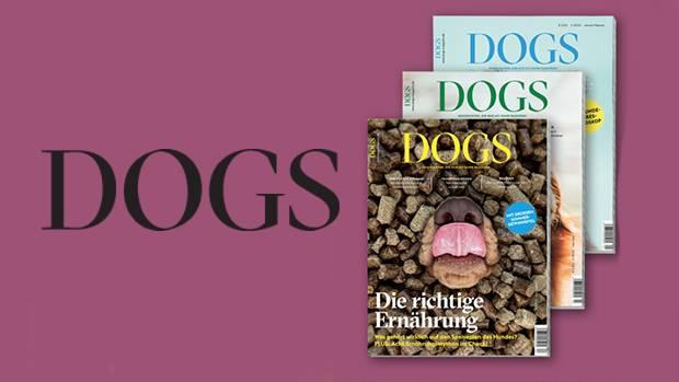 Abonnieren Sie den DOGS-Newsletter