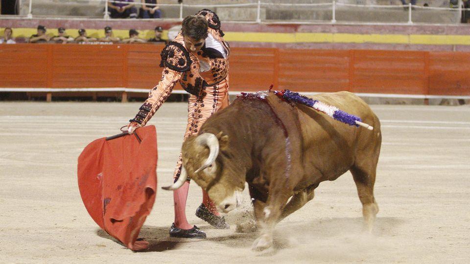 Stierkampf auf Mallorca