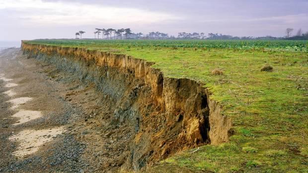 Die Küste von Covehithe in Suffolk hat eine der größten Erosionsraten Großbritanniens. In den Erdschichten finden sich zahllose Zeugnisse aus der europäischen Vorgeschichte.