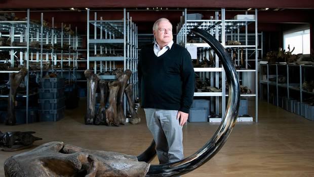 Mammut-Experte Dick Mol im Ausstellungsraum von North Sea Fossils im niederländischen Urk
