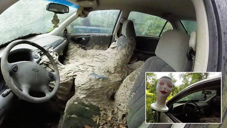 Kammerjäger im Einsatz: Dieses Auto ist ein einziges Wespennest