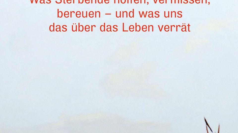 """Das Buch """"Letzte Wünsche"""" von Alexander Krützfeld"""