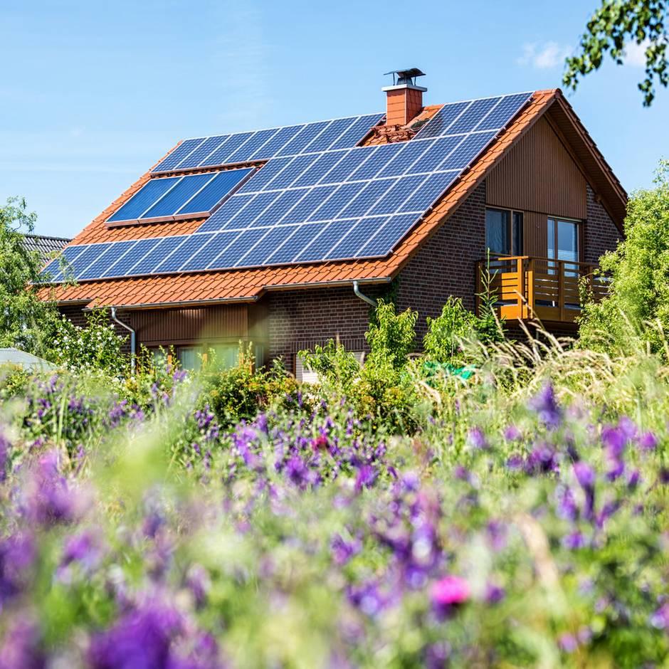 Regenerative Energien: Solaranlagen – darum lohnen sie sich inzwischen für fast alle Hausbesitzer