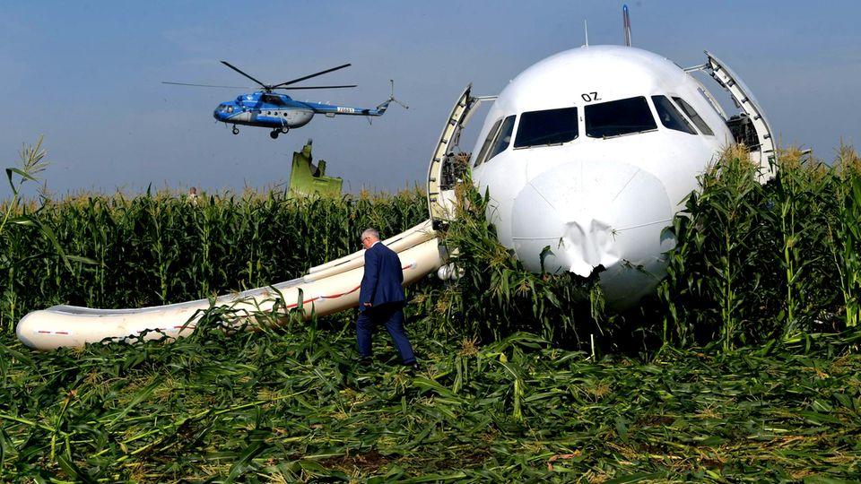 DiePiloten landeten die Ural-Airlines-Maschine in einem Maisfeld bei Moskau