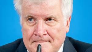 Horst Seehofer:Syrische Heimaturlauber abschieben