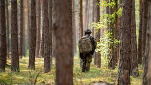 Bundeswehr-Soldaten im Wald