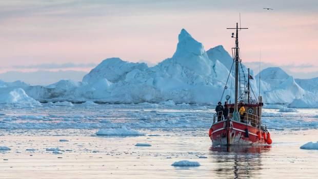 Vor der Küste treiben riesige Eisberge im Meer