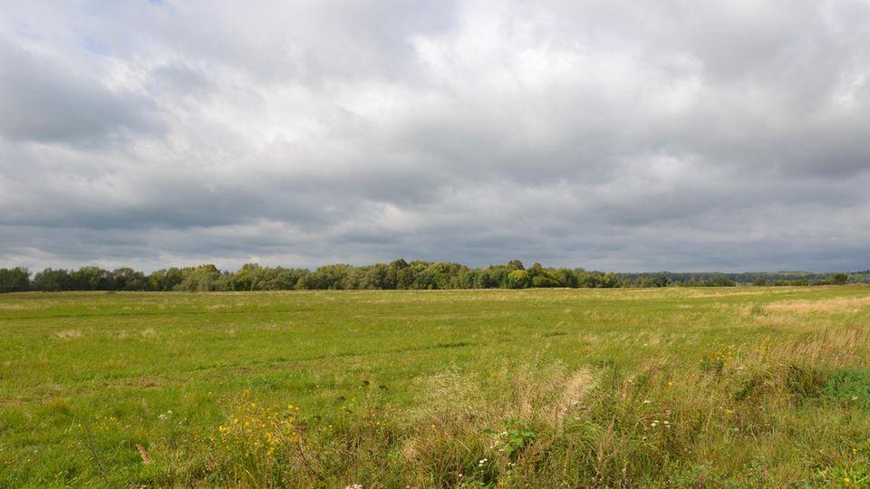Die weiten Felder vor Zabrodino, dem früheren Lesgewangen