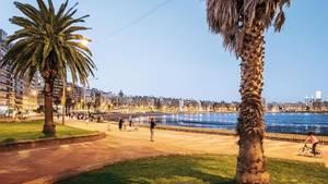 Die Playa de los Pocitos, eine Bucht in Montevideo