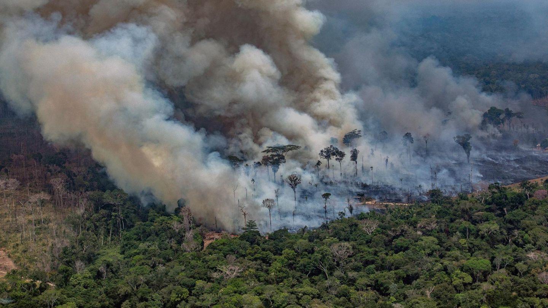 Das Bild zeigt die massiven Waldbrände im Nordwesten von Brasilien
