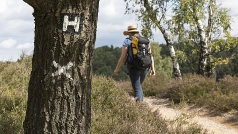 Tag des Wanderns: Das sind die schönsten Wanderwege in Deutschland