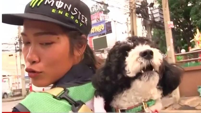 Kurioses Bild: Foto von Straßenkehrerin mit Hund auf dem Rücken geht viral – das ist ihre Geschichte
