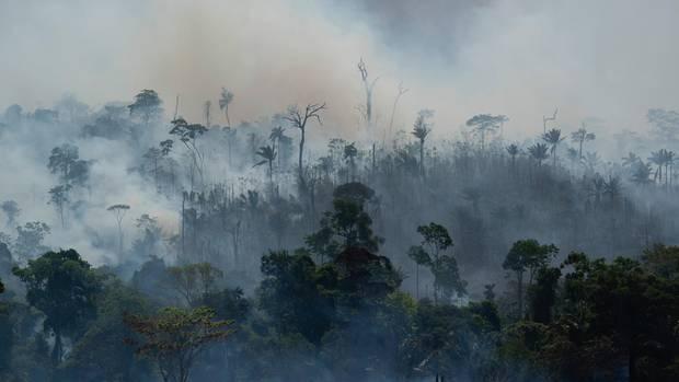 Brasilien: Rauch steigt aus dem Regenwald im Amazonas auf