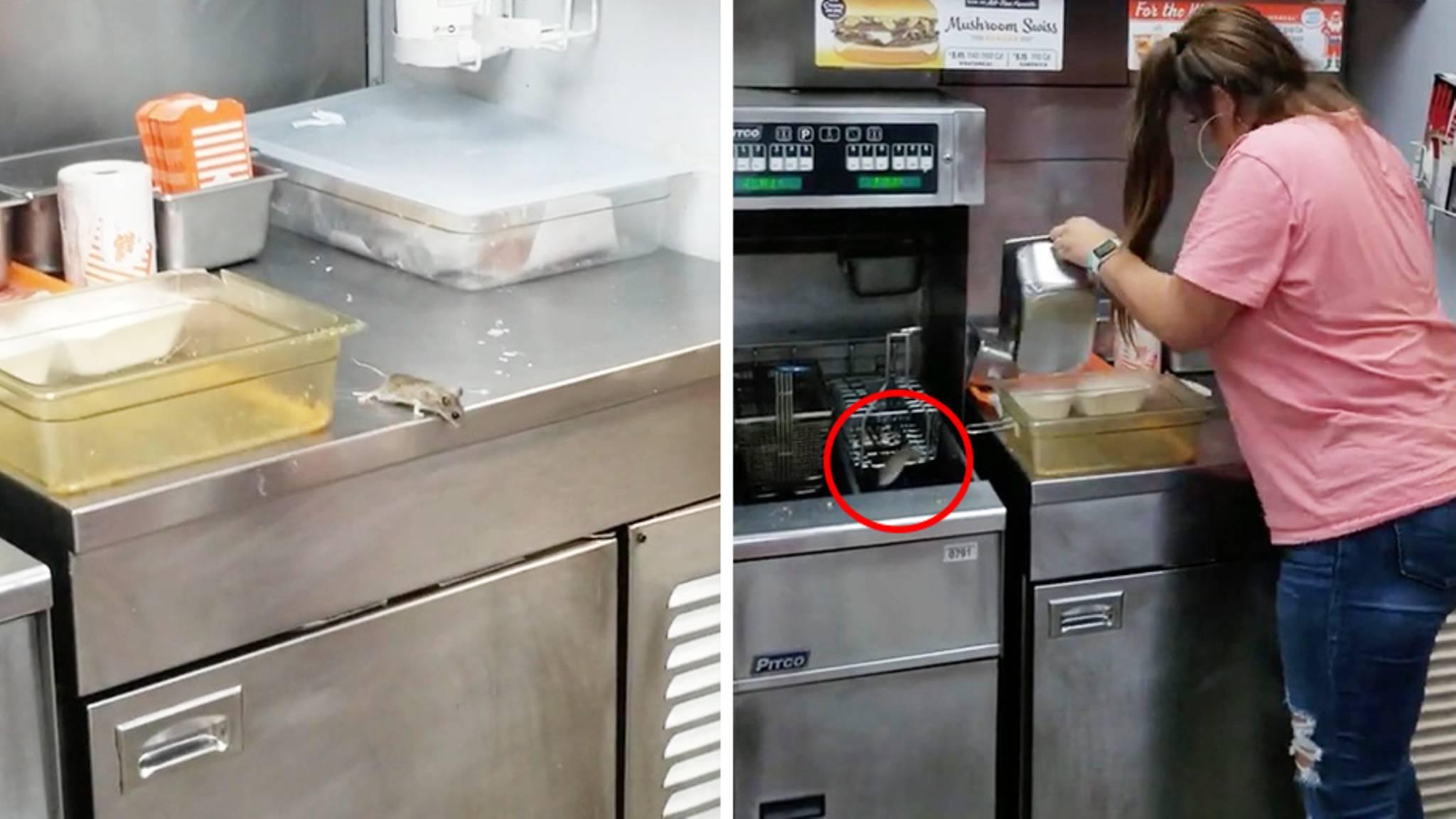Frau Will Maus In Einem Burger Laden Fangen Das Endet Tragisch Fur Das Tier