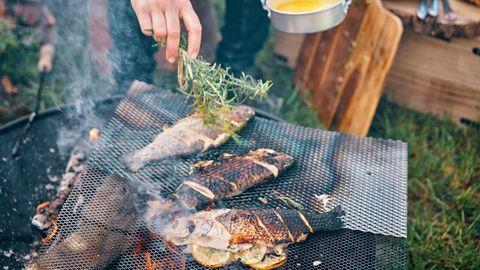 Fische braten auf einem Grill vor sich hin
