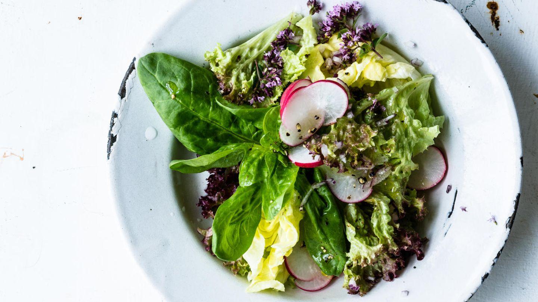 Frischer Blattsalat ist täglich Labsal für den Körper, mehr noch, wenn er als Träger für Vinaigrettes fungiert