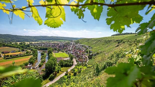 Ein idyllischer Blick ins Tal bei Roßwag. Die Hänge sind voller Weinreben
