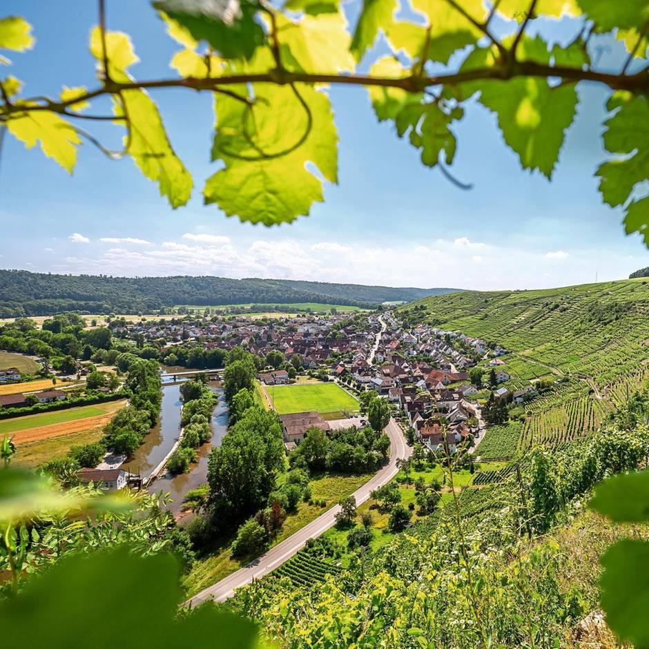 Deutschland: Ein schöner Land: Auf Weinradtour durch Württemberg