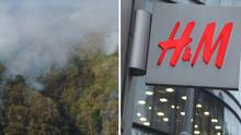 Collage: Waldbrand, H&M Logo