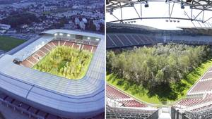 Klagenfurt: Ein Fußballstadion voller Bäume – Die Geschichte hinter den skurrilen Bildern