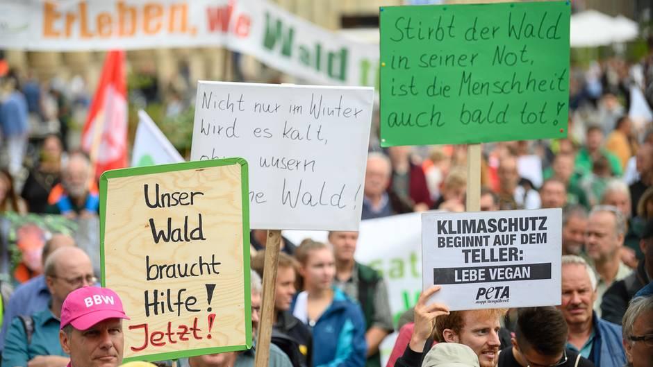 In Stuttgart weisen Demonstranten auf die Belastung der Wälder hin.