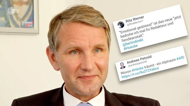 Björn Höcke, Landessprecher der AfD von Thüringen