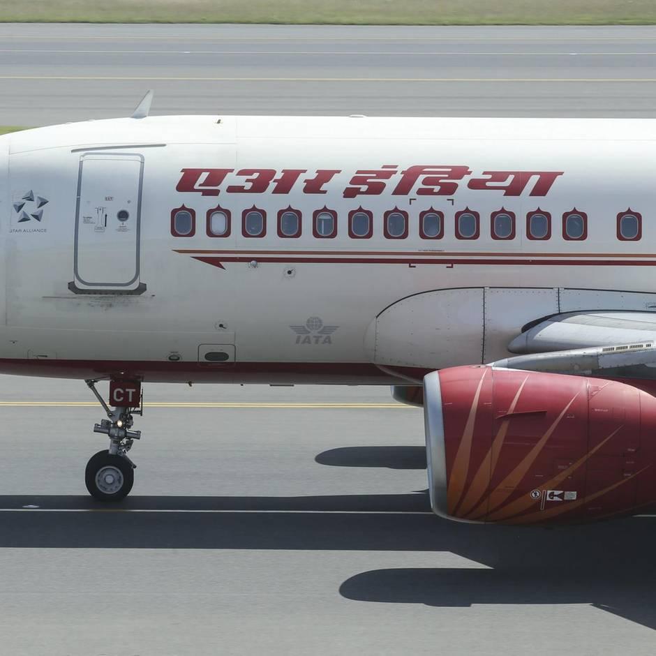 Air India: Bienenschwarm landet auf Cockpit-Scheibe und sorgt für stundenlange Flugverspätung