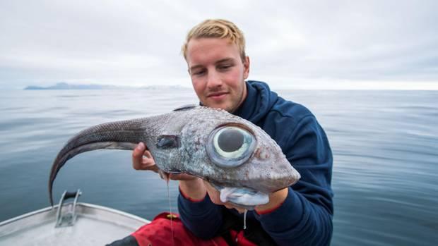 Fischer Oscar hält einen Fisch mit riesigen Glubschaugen in den Händen