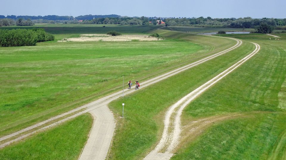 Radfahrer auf dem Elbdeich