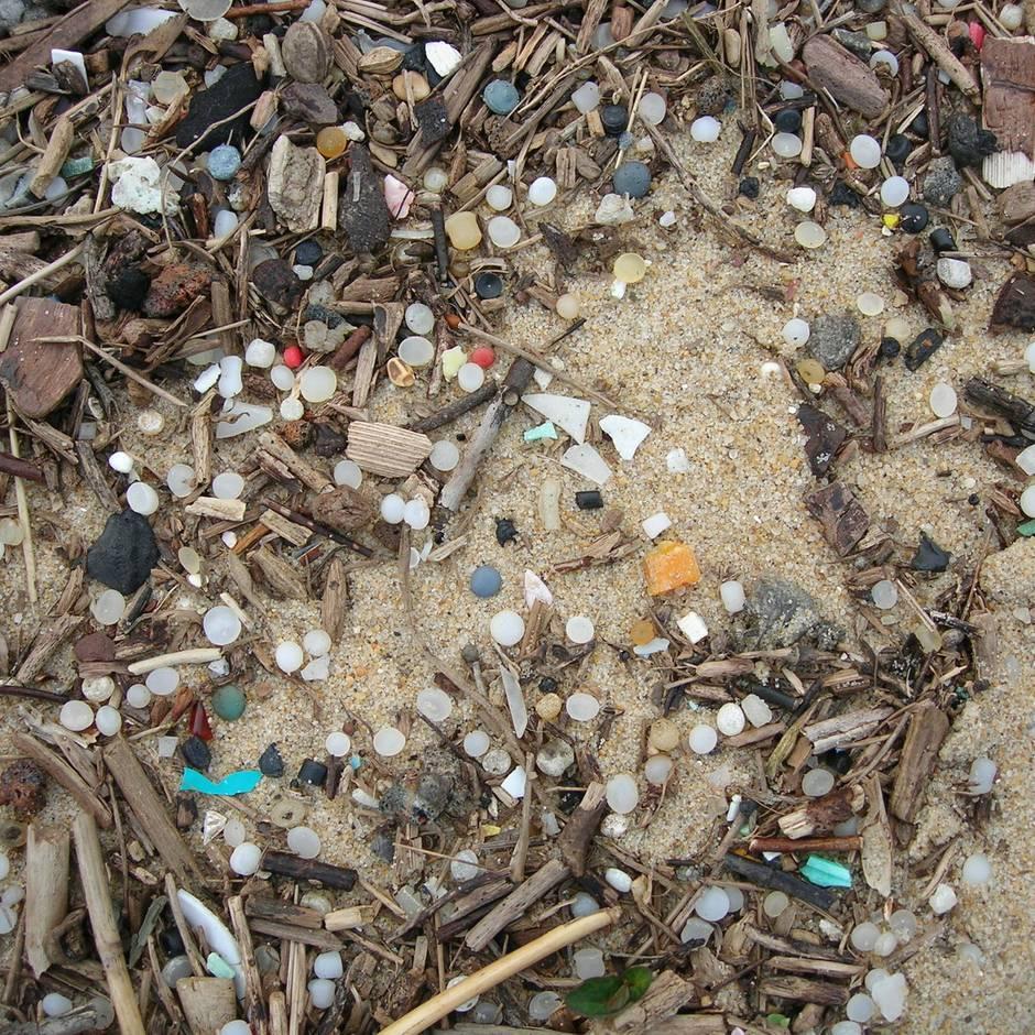 Umweltverschmutzung: Mikroplastik – wie die Industrie mit Rohplastik die Meere verseucht