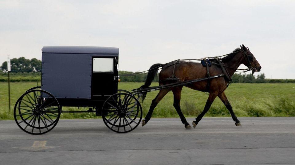 Traditionelles Fortbewegungsmittel: Amische verzichten auf Autos und nutzen stattdessen Pferdekutschen (Symbolbild).