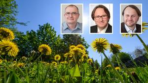 Steffen Bender, Peer Seipold und Markus Groth, wissenschaftliche Mitarbeiter von Gerics, formulierten zusammen mit dem stern Tipps, wie man sich dem Klimawandel anpassen kann.