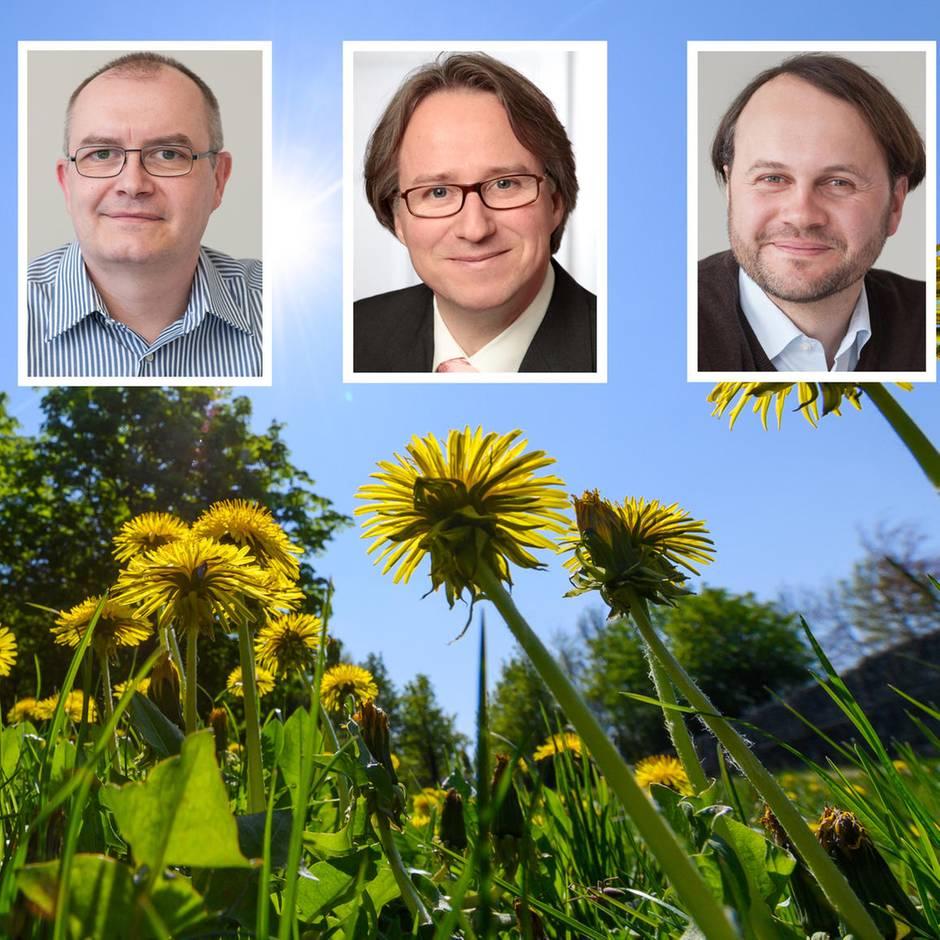Empfehlungen von Klimaexperten: Diese Experten beraten Firmen und verraten: So rüsten Sie sich für die Erderwärmung