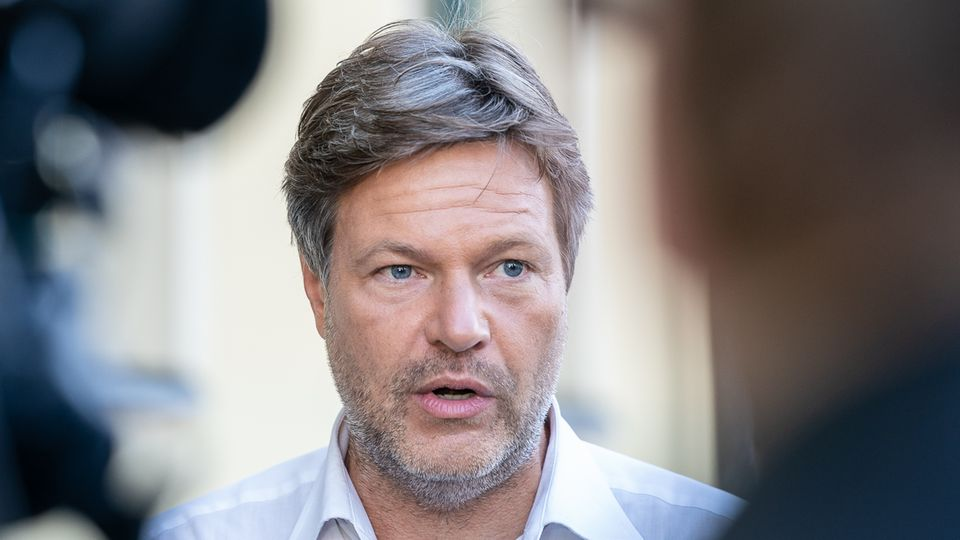 Robert Habeck, Co-Parteichef der Grünen