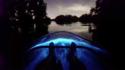 Leuchtendes Wasser in Florida