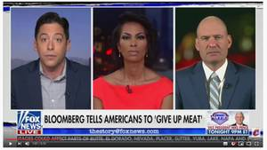 Michael Knowles bei Fox News