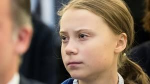 Greta Thunberg hat mit ihren Tweets auch zur Demo am Freitag aufgerufen
